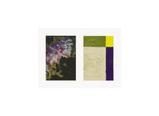 30 x 45 cm. monotype op papier Altena Boswinkel Collectie