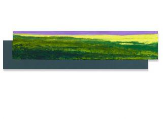40 x 160 cm. olieverf en alkydverf op linnen op paneel